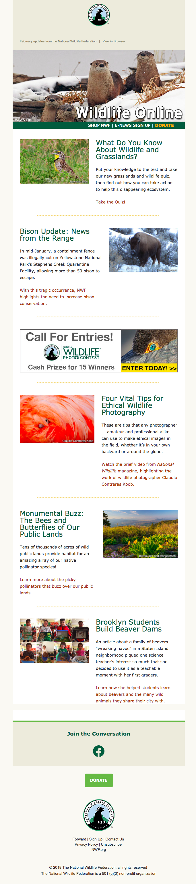 National Wildlife Federation e-newsletter example
